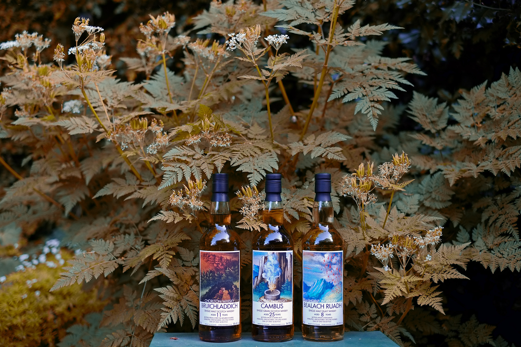 Image result for Mackmyra whisky autumn